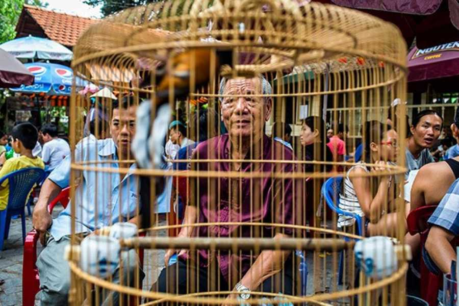 Friends Travel Vietnam The Real Saigon Vespa Experience