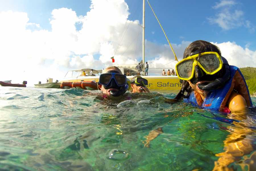 Blue Water Safaris Half Day Sail and Snorkel with Lunch