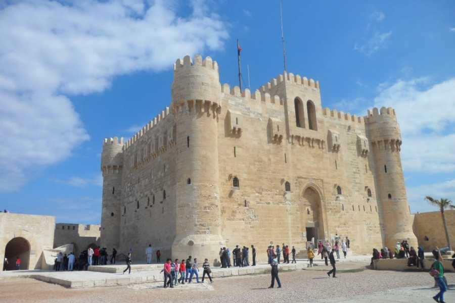 EMO TOURS EGYPT Day Tour To Alexandria from Cairo