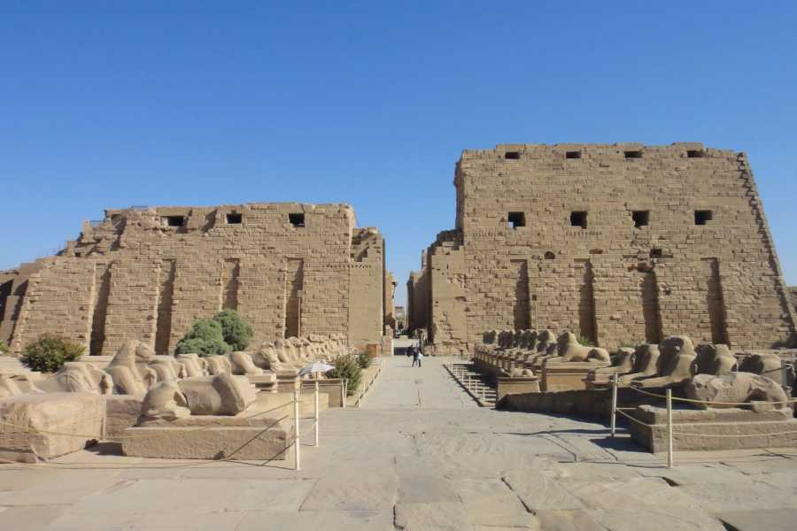 EMO TOURS EGYPT Day tour to Luxor from Cairo by flight