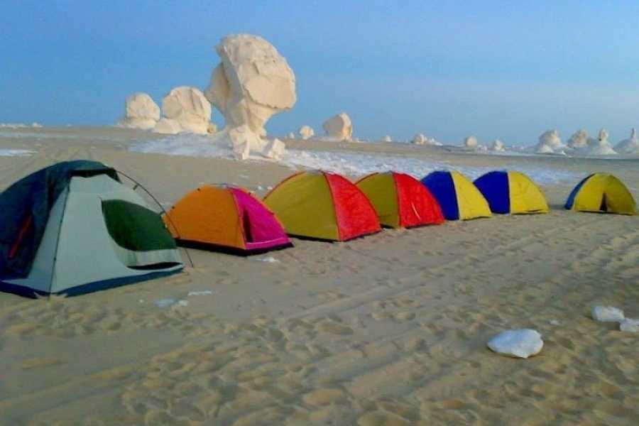 EMO TOURS EGYPT Overnight trip camping in White and Black desert from Cairo
