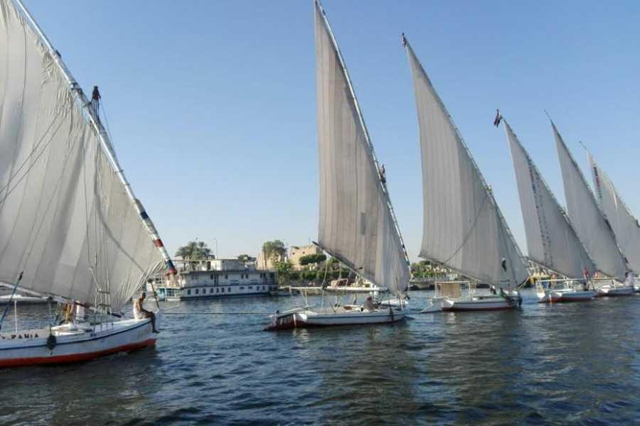 EMO TOURS EGYPT 短的三桅小 在卢克索乘船游览