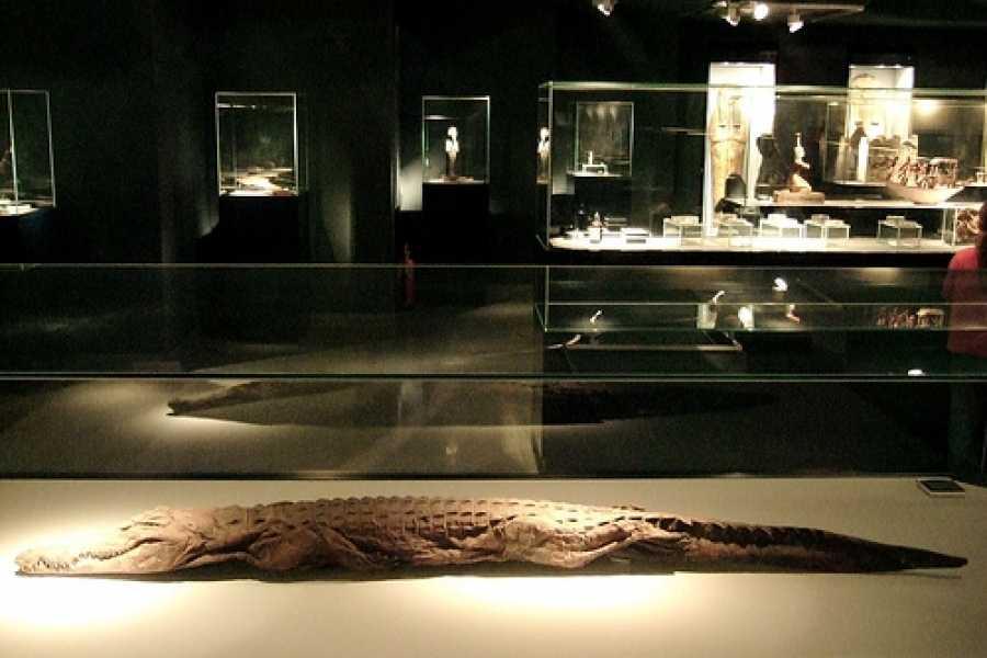 EMO TOURS EGYPT MEIO DIA DE VISITA LUXOR E MUSEUS MUMMIFICATION