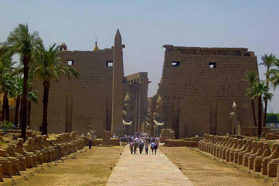 EMO TOURS EGYPT 从沙姆沙伊赫乘飞机前往卢克索