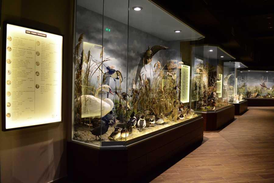 Visit Meteora Meteora Natural History Museum Tour