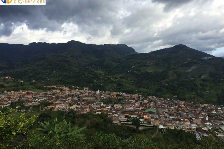 Medellin City Tours BoGo TOUR: BOOK A FULL DAY COFFEE TOUR AND GET ONE CHRISTMAS LIGHTS TOUR FOR FREE
