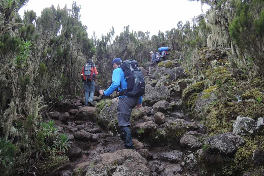 Adventurati Outdoors Mt Kilimanjaro - February 14