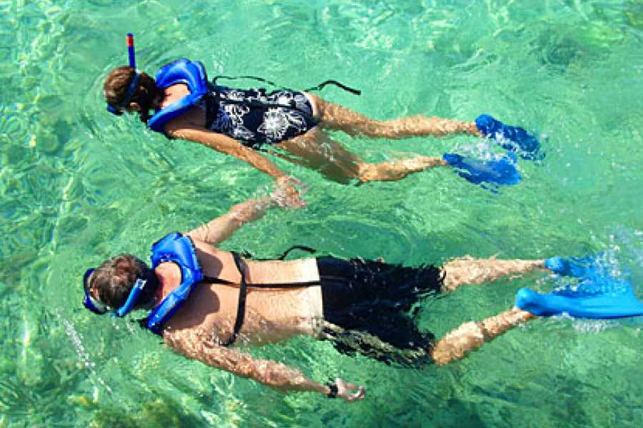 Oasis PMCS Family Snorkel and Sight See tour