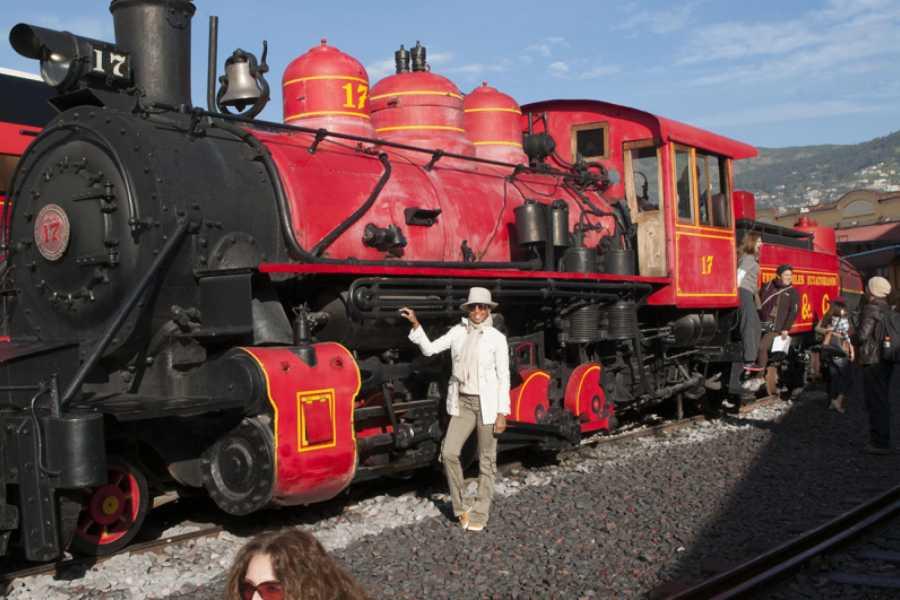 Go Montanita Tren de la Libertad II