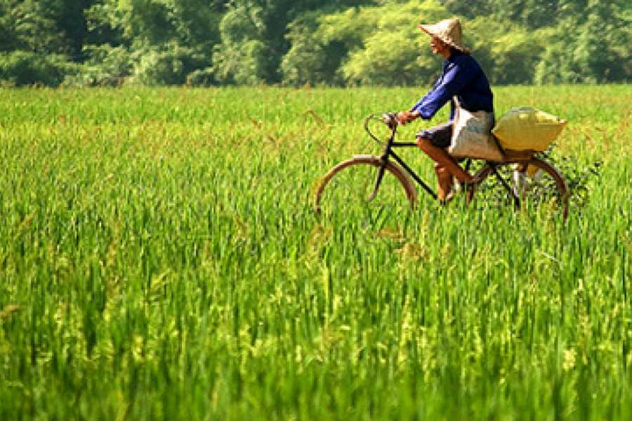Vietnam 24h Tour Mai Chau Complete Escape 3 days