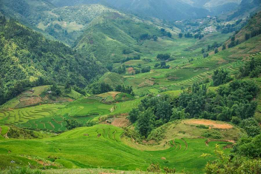 Vietnam 24h Tour Sapa Trekking 2 days - Hotel