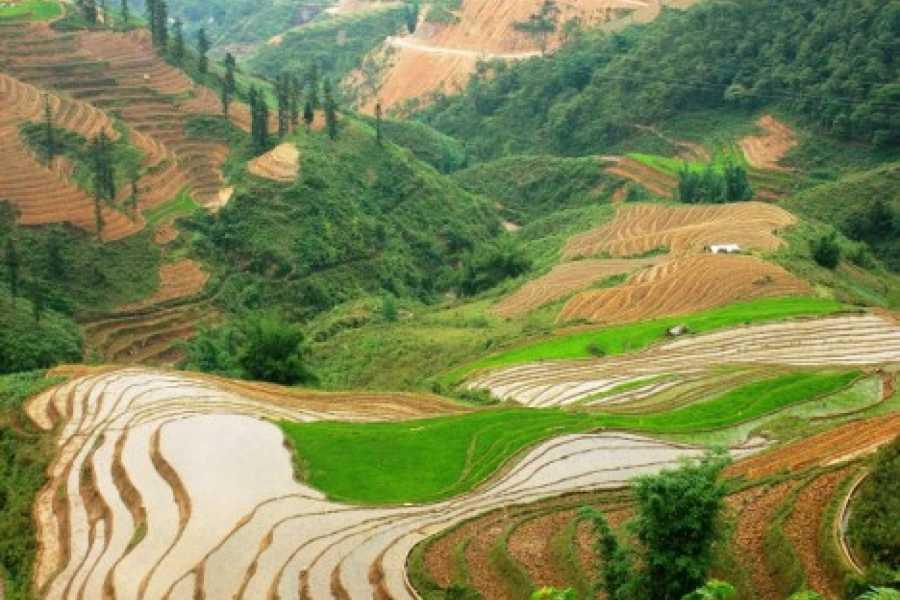 Vietnam 24h Tour Sapa Trekking - Bac Ha Market 2 days