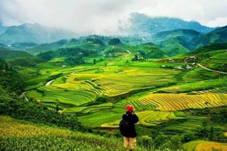 Vietnam 24h Tour Sapa Trekking 2 days - Homestay