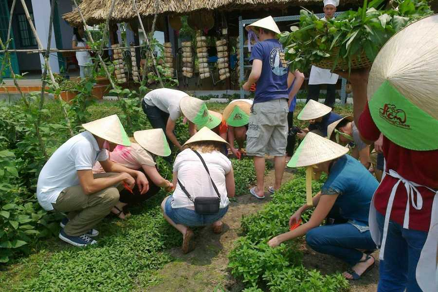 Vietnam 24h Tour Cu Chi Tunnel & Cooking Class Full day
