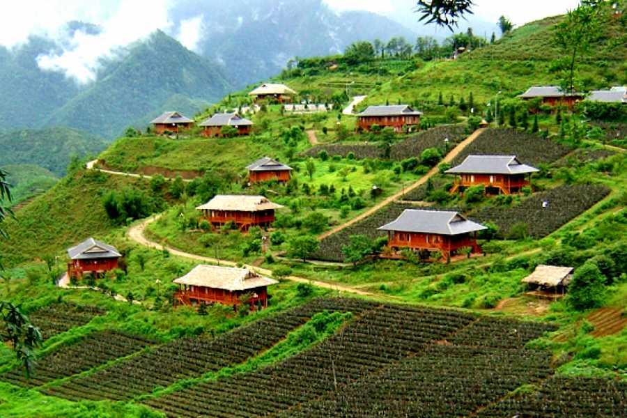 Vietnam 24h Tour Experience Sapa - Mu Cang Chai 7 days