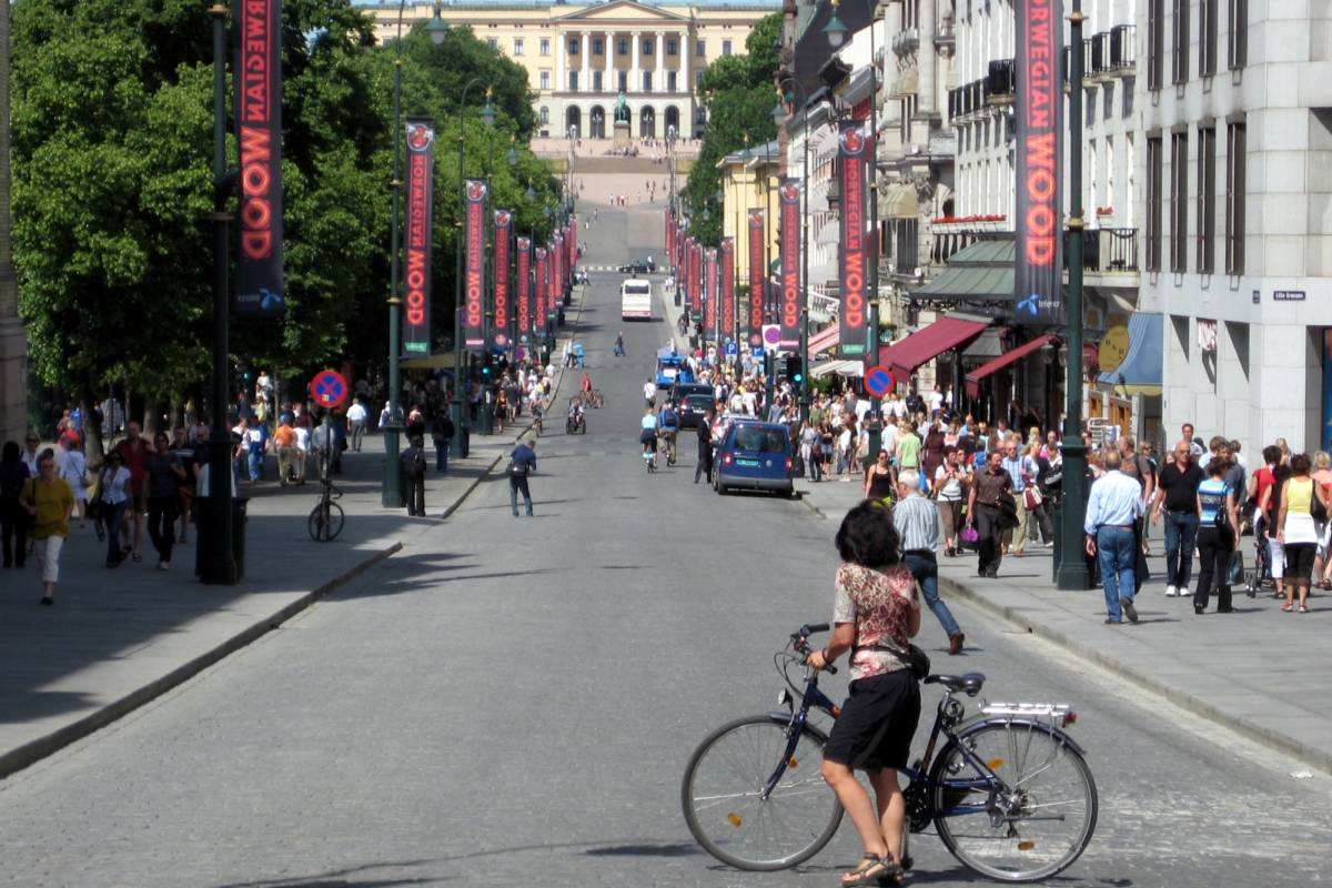 viking biking Oslo Highlights Bike Tour