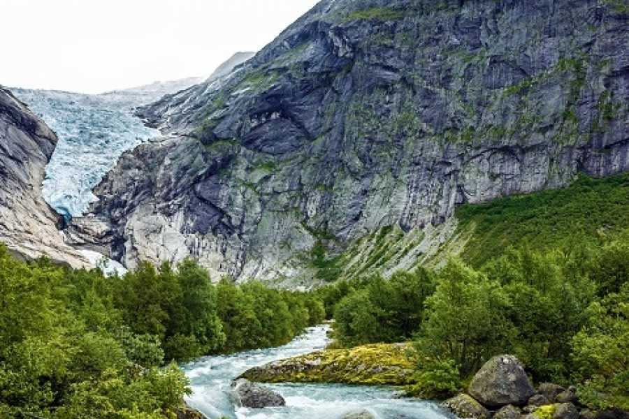 Norway Excursions Olden le Glacier Briksdal