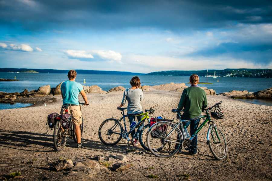 Viking Biking & Hiking Bike Tour: Vikings & Beaches