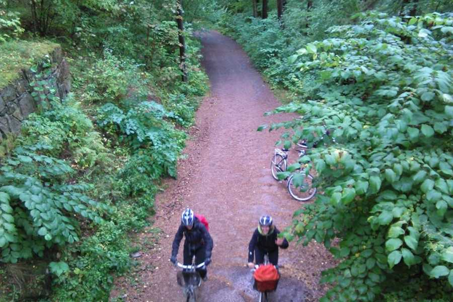 Viking Biking Bike Tour: Forest to Fjord