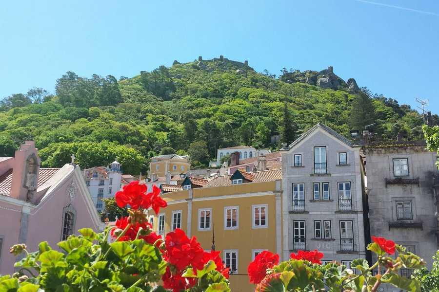 Lisbon on Wheels Tour privé à Sintra à partir de Lisbonne (van et chauffeur)