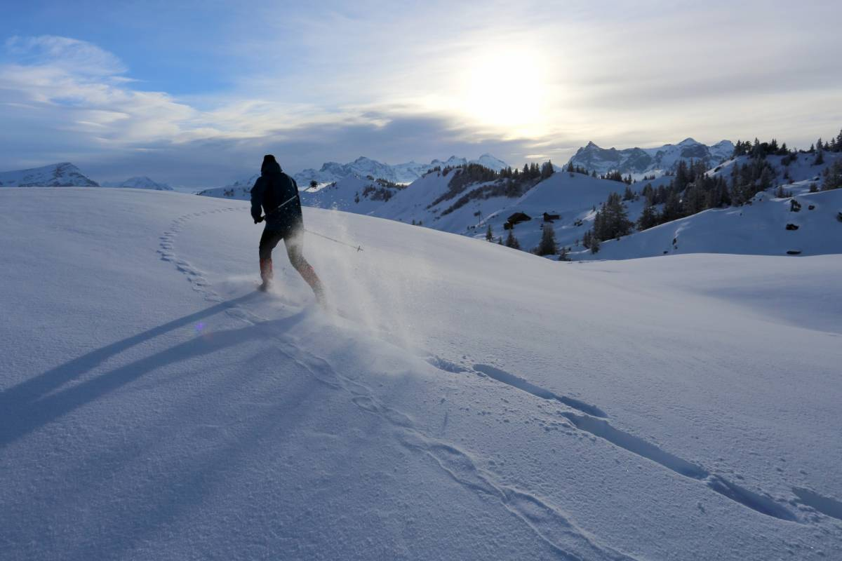 Andermatt Adventure - Crown of Alps AG Schneeschuhwandern (2.5h) am Abend