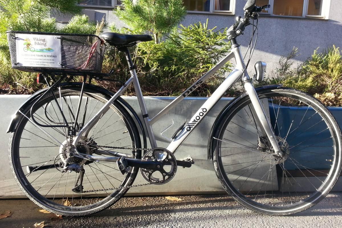 viking biking Bike Rental (24 hours)
