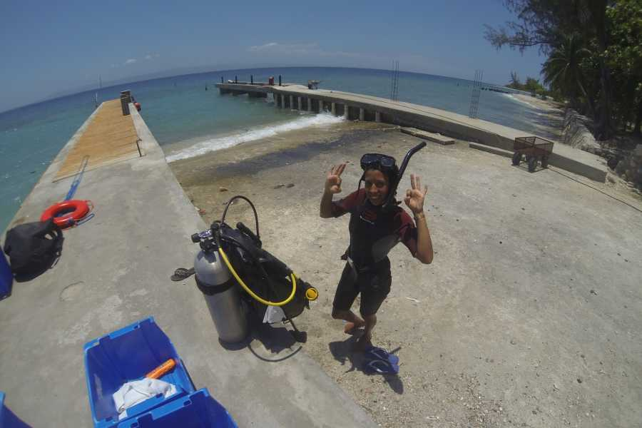 Marina Blue Haiti Discover Scuba Diving