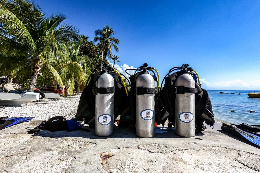Marina Blue Haiti Guided Shore Diving