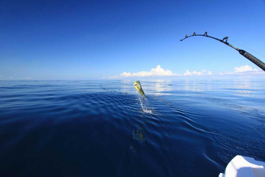 Marina Blue Haiti Pêche Sportive