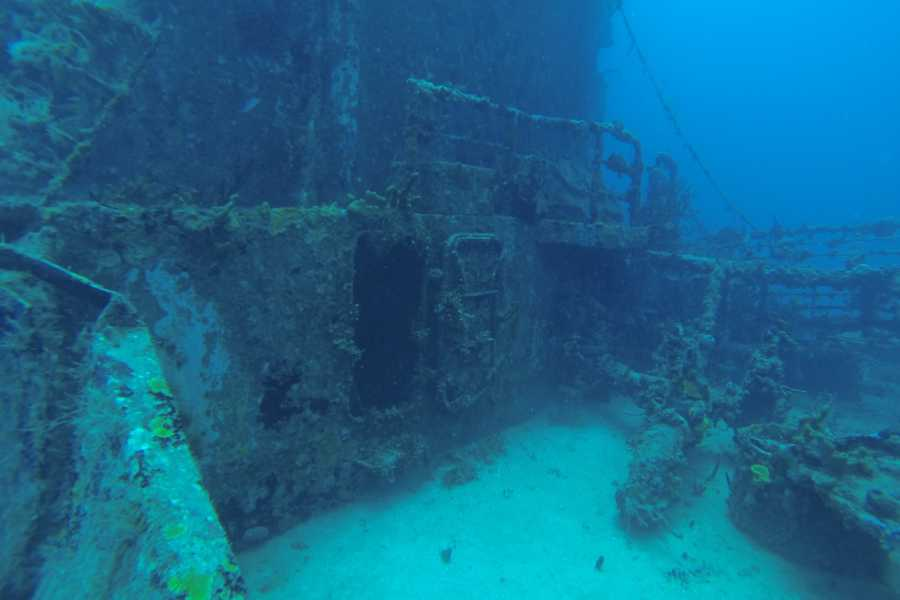 Marina Blue Haiti Double Tank Boat diving Excursion (Advanced)