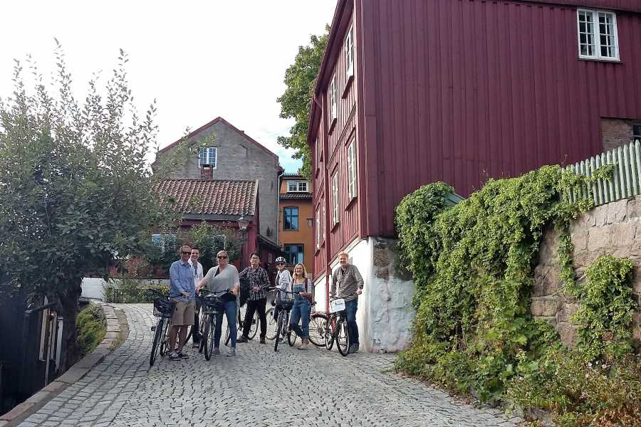 Viking Biking & Hiking Private bike tour (2 hours)