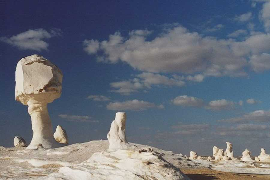 Deluxe Travel 2 Days White Desert and Bahariya  Camping