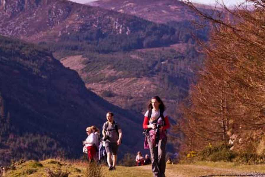 wildernessactivitiesireland 4 days / 3 nights Wicklow Walk: Roundwood to Moyne