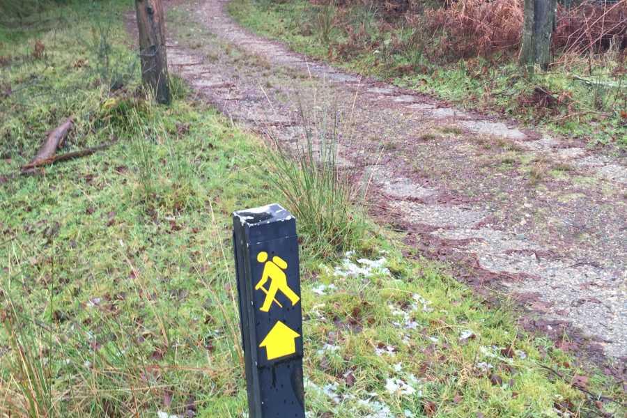 wildernessactivitiesireland 4 days / 3 nights Wicklow Walk: Roundwood to Moyne