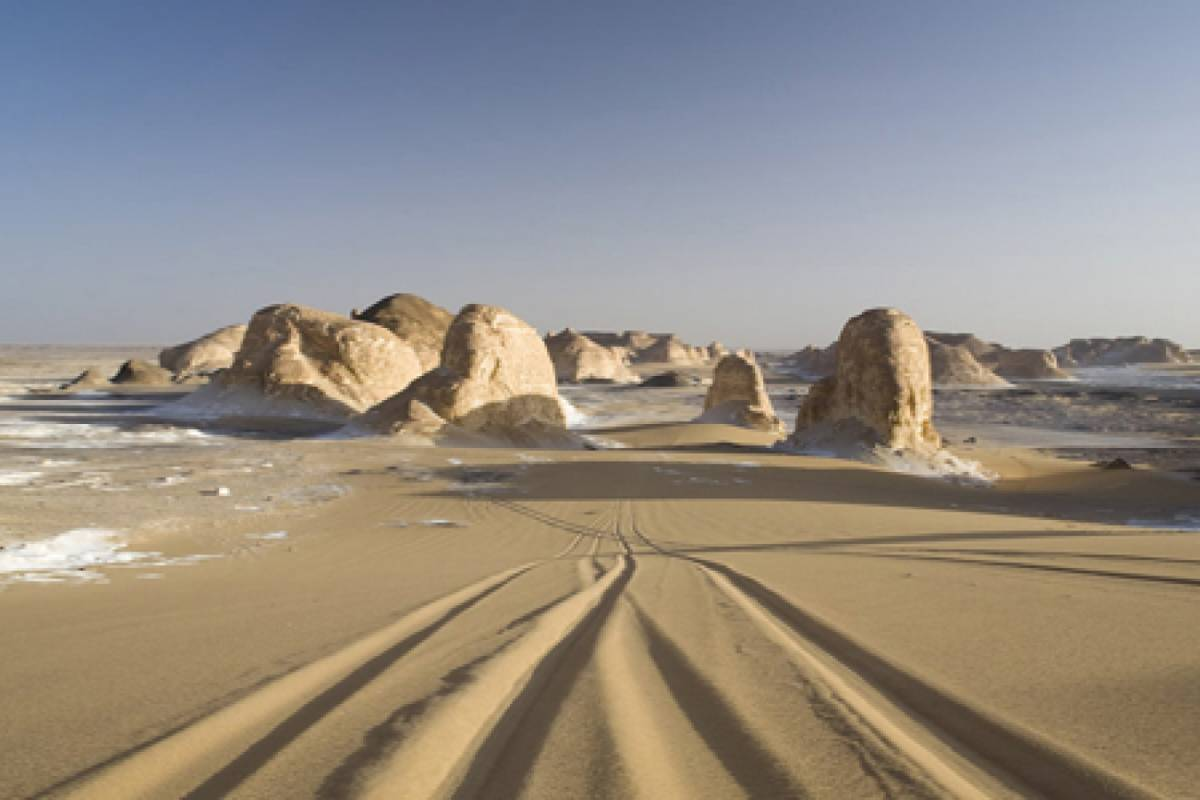 Deluxe Travel 4 Nights Western Desert Safari
