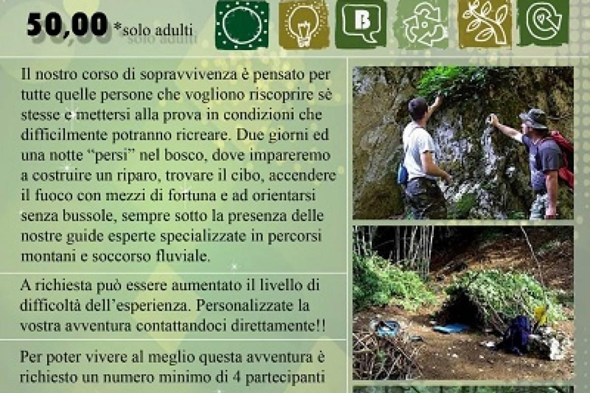 Lucca Quad Quad & Survival
