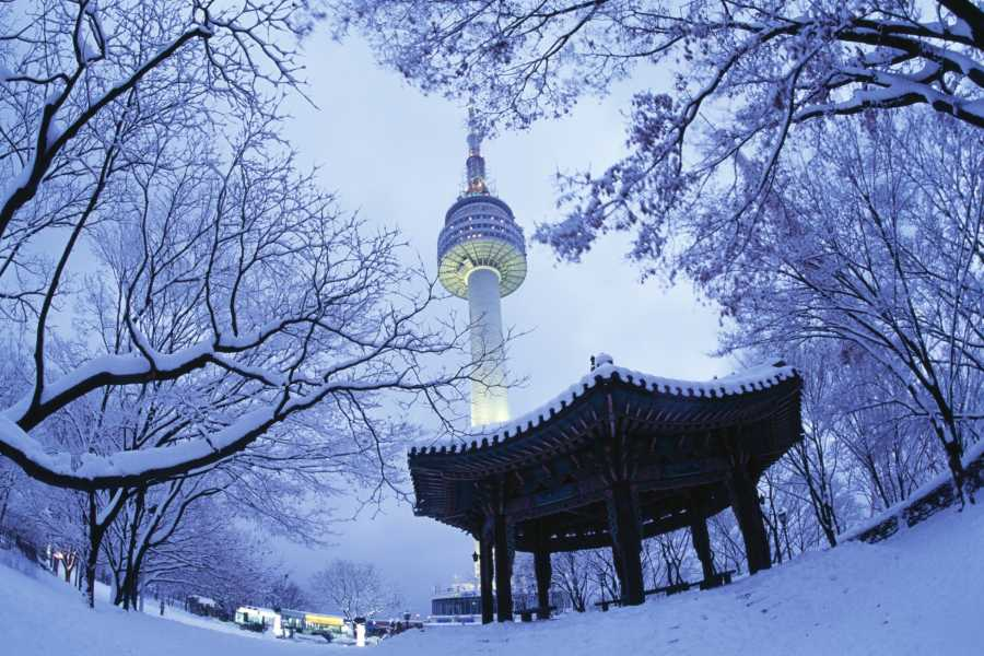 Kim's Travel 01 WINTER PROMOTION UNIQUE SEOUL (4D3N)
