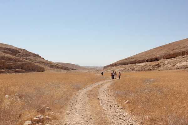 18-21 November 2020, Masar Ibrahim, Autumn - Southern Part