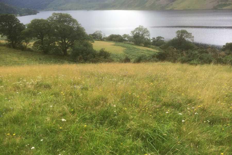 Lake District Tours TOUR N STAY