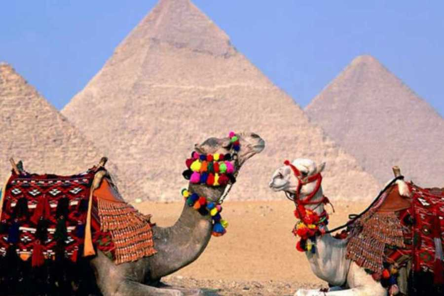 Deluxe Travel Camel or Horse Back Riding at the Pyramids