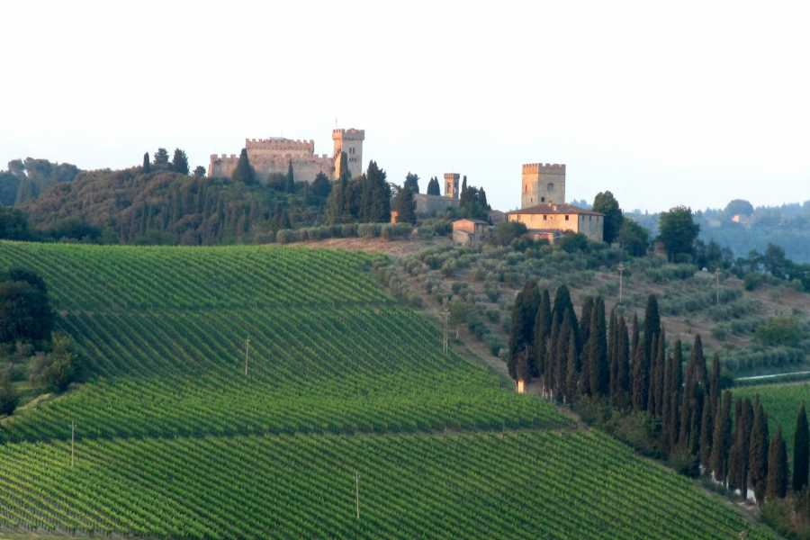 Tuscany Trotter CHIANTI & WINE TOUR IN THE TUSCAN COUNTRYSIDE
