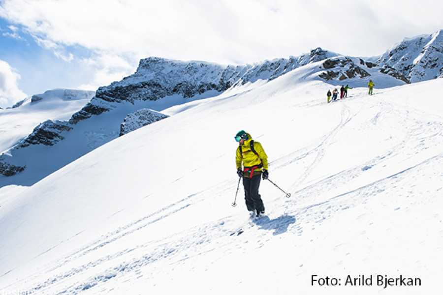 Contrast Adventure Norway Backcountry Ski Touring