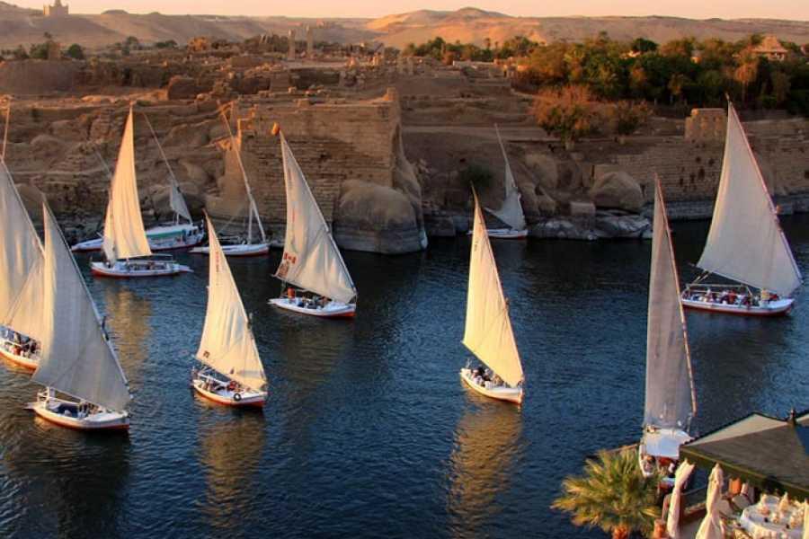 Deluxe Travel Aswan Felucca Ride Botanical Garden Elephantine Island