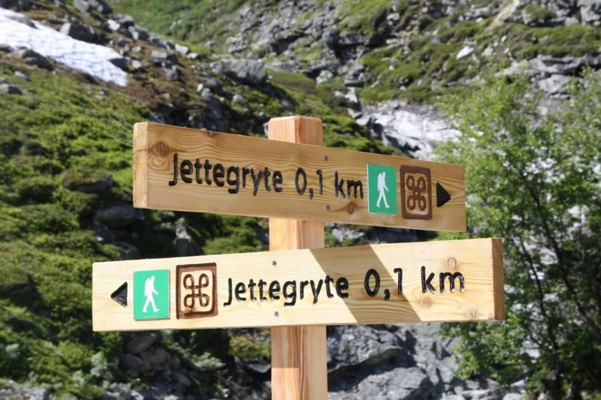Contrast Adventure Norway Villreinsafari