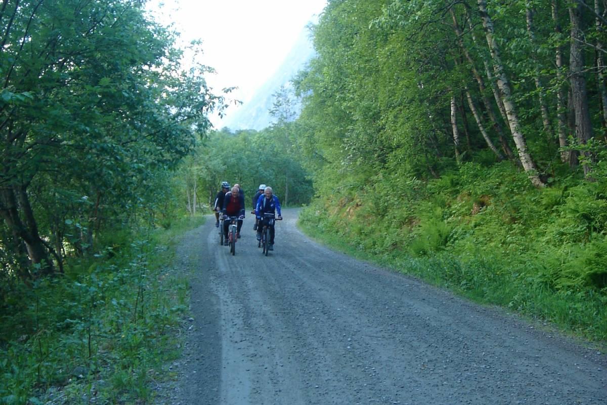 Contrast Adventure Norway Bike tour Aursjøveien