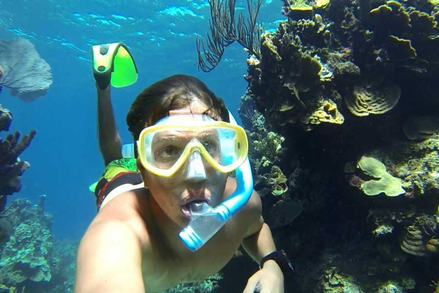 Marina Blue Haiti Snorkeling