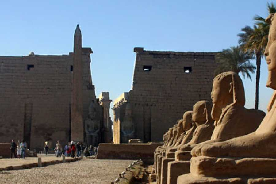Deluxe Travel Cairo and Nile Cruise Holidays