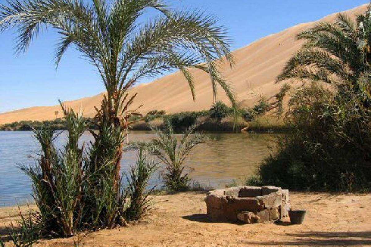 Deluxe Travel Baharia Oasis Day Tour from Cairo