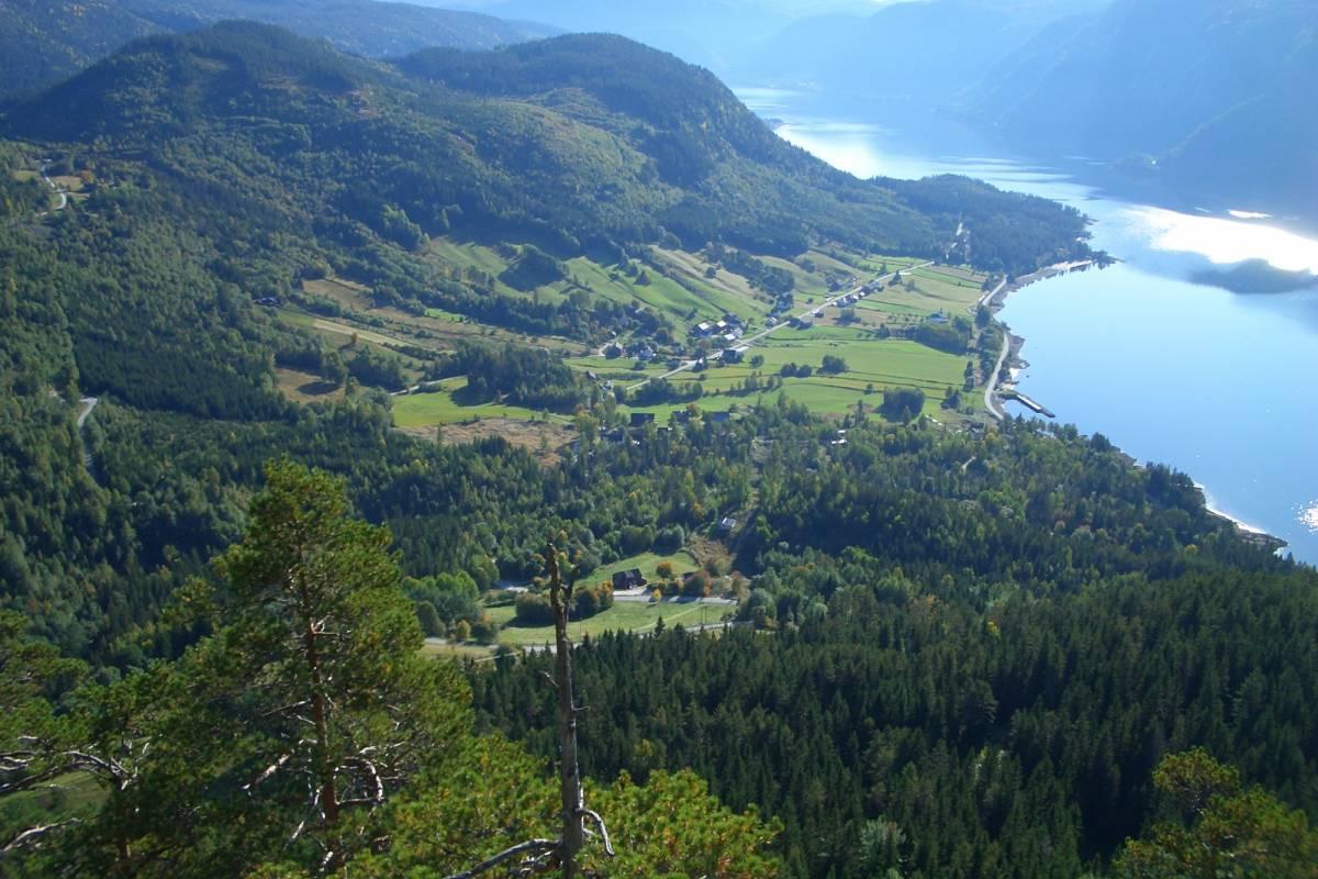 """Guide Sør The byglandsfjord & steamboat """"Bjoren"""""""