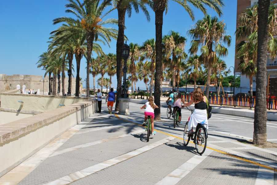 Sights and Bikes Day Tours Cadiz Bike Tour
